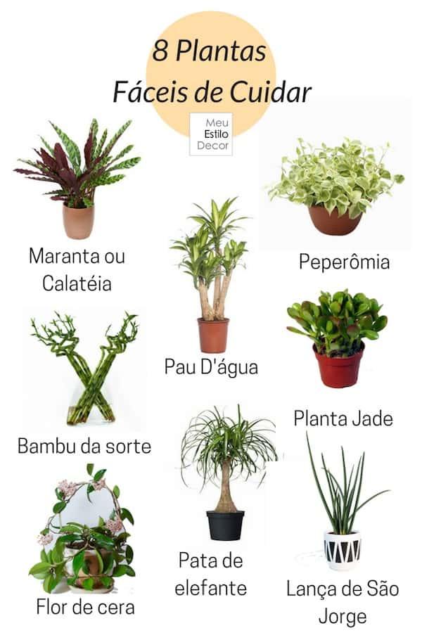 decoracao simples e estilosa letras p q r plantas