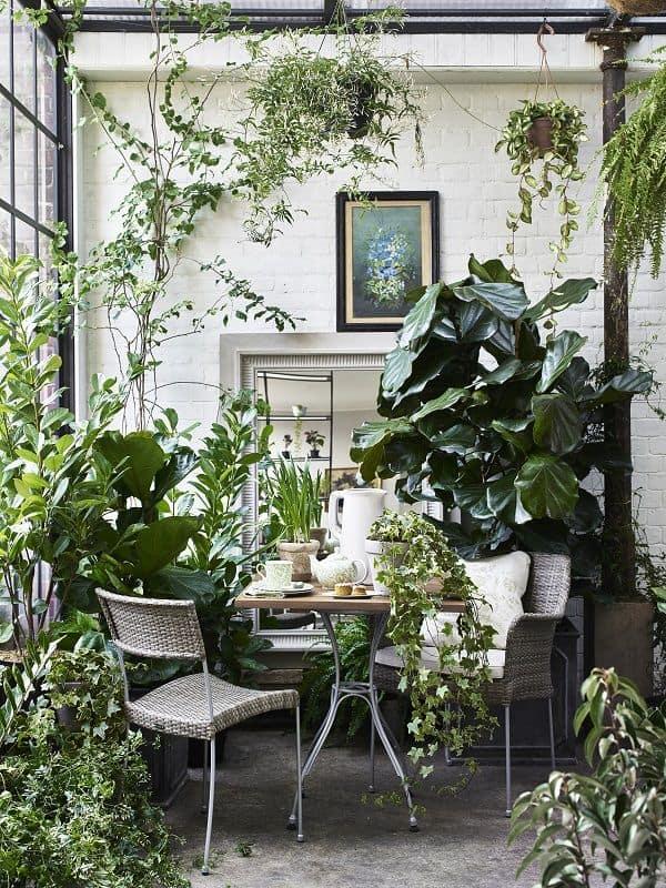 decoracao urban jungle garden room