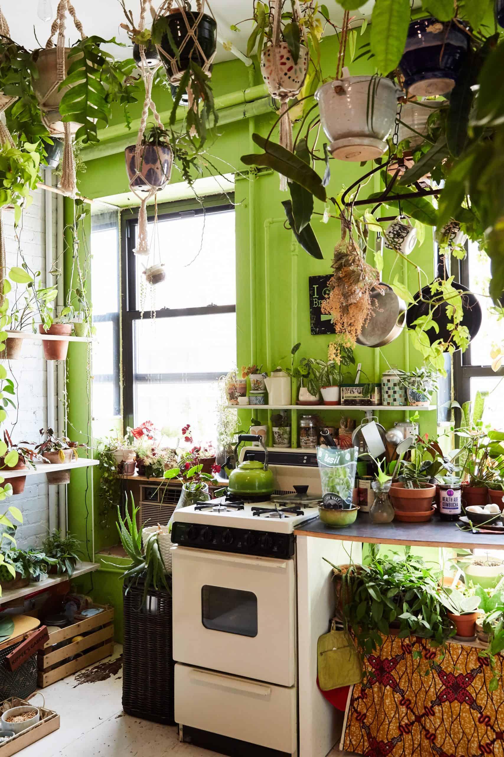 decoracao urban jungle cozinha